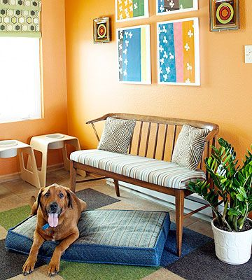 17 best images about pet friendly homes on pinterest toys for dogs