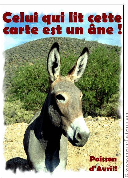 Joyeux 1er avril ! Profitez du 1er avril pour faire des farces à vos amis émoticône smile http://www.merci-facteur.com/cartes/rub32-1er-avril.html #poissondavril #1eravril #humour Carte L'�ne qui lit cette carte pour envoyer par La Poste, sur Merci-Facteur !
