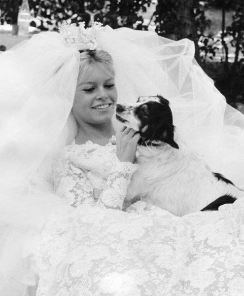 Beautiful bride Brigitte Bardot & pup