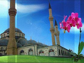 Menzil,gavsa sevdalı,sofiler,tövbe camiisinde buluştu,Allah için sevdiler,bir araya geldiler,sultanım,hepimize sevgini ver,islamla ,yaşayalım,islam üzere ölelim.hayırla geldiniz,SELAMINALEYKÜM.