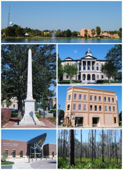 Top, left to right: Lake De Soto, Battle of Olustee monument, Columbia County Courthouse, City Hall, Florida Gateway College, Osceola National Forest