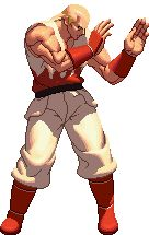 Andy Bogard Animations