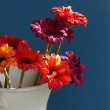 Add a dash of colour to your home with bright flowers...