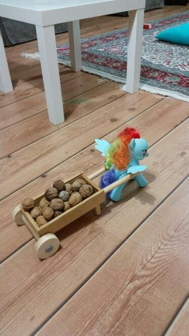 Cart & Wheelbarrow