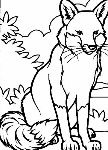 2014 fox coloring sheetsfor the fantastic fisher academy - Kids Coloring Pages Animals