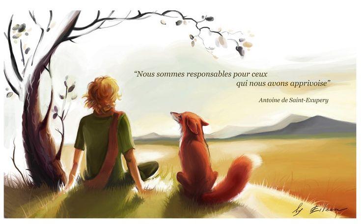 """__________e Eu!  """"Tu te tornas eternamente responsável por aquilo que cativas!"""" (Antoine de Saint Exupéry)"""