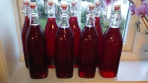 Homemade redcurrant squash! Easy peasy to do!