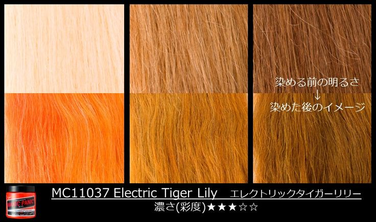 Manic Panic Electric Tiger Lily on different levels of hair