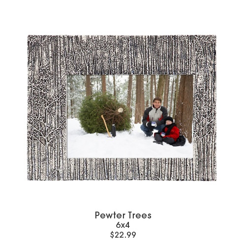 Pewter Trees Frame From Aaron Brothers River Park Home