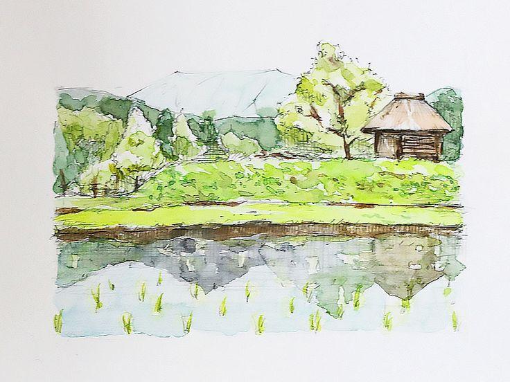 Rice field Watercolor 田園風景の描き方(油絵)