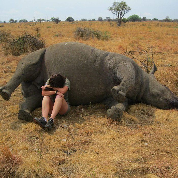 Powerful Picture of a Wildlife Reserve Worker Weeping Next to Poached Rhino Sheds Light on the Fierce Battle to Save These Animals