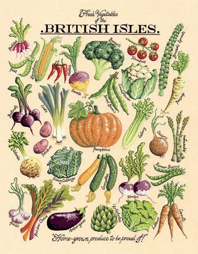 Fresh Vegetables Art Print by Kelly Hall Easyart.com