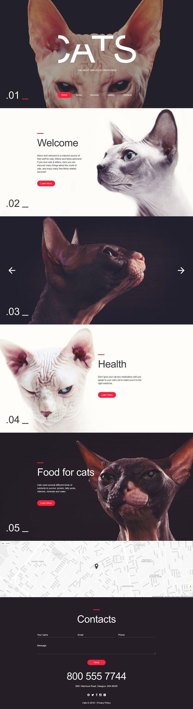 Cat Responsive Website Template http://www.templatemonster.com/website-templates/responsive-website-template-58052.html