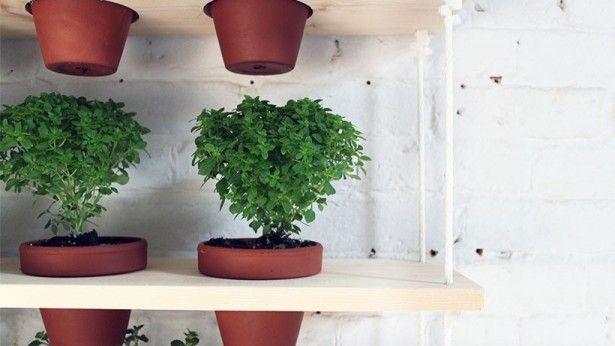 DIY: een gaaf hangend kruidenrek voor in de tuin