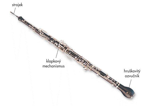 Anglický roh je dvouplátkový dřevěný dechový nástroj patřící do rodiny hobojových nástrojů (jako její altový zástupce), používá se zejména v symfonických orchestrech.