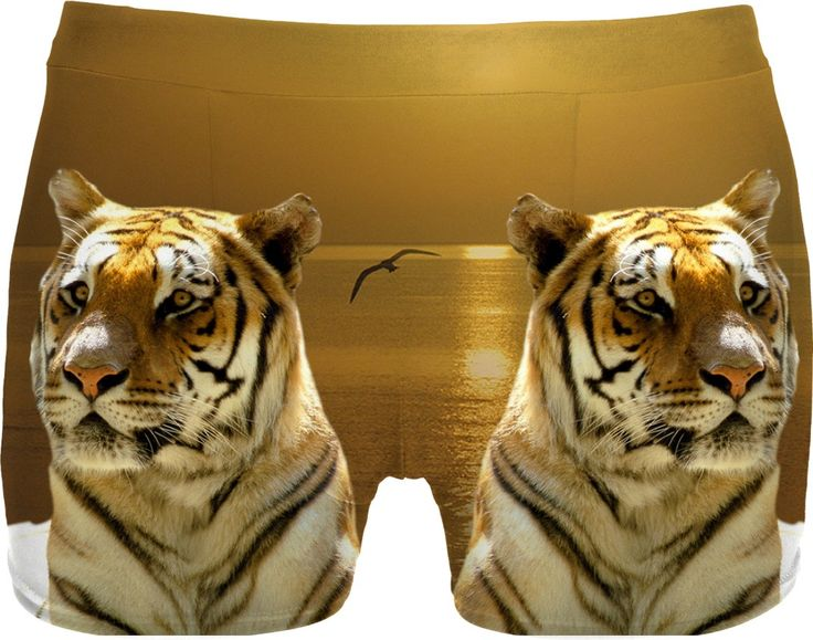 Check out my new product https://www.rageon.com/products/golden-tiger-men-underwear-2?aff=BWeX on RageOn!