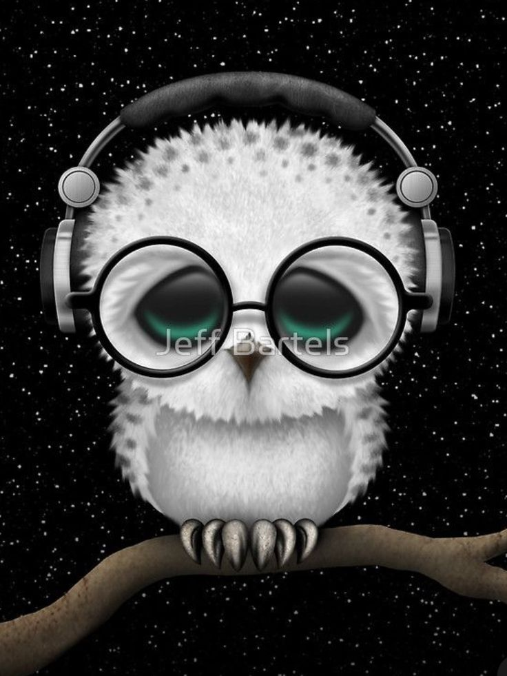 Baby Owl DJ With Headphones and Glasses