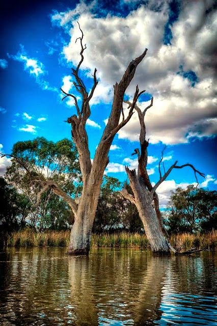 Canoe Adventures - Riverland - Google+