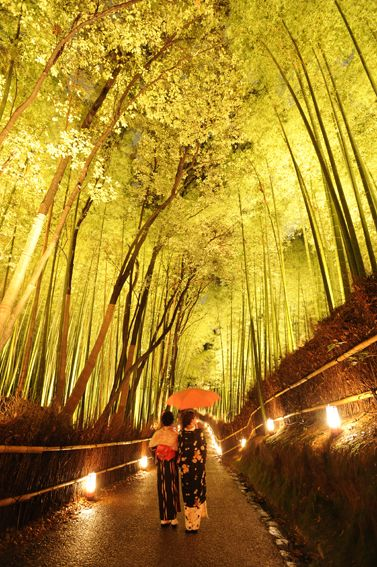 When I'm with that special someone.   Kyoto Arashiyama Hanatouro, Japan