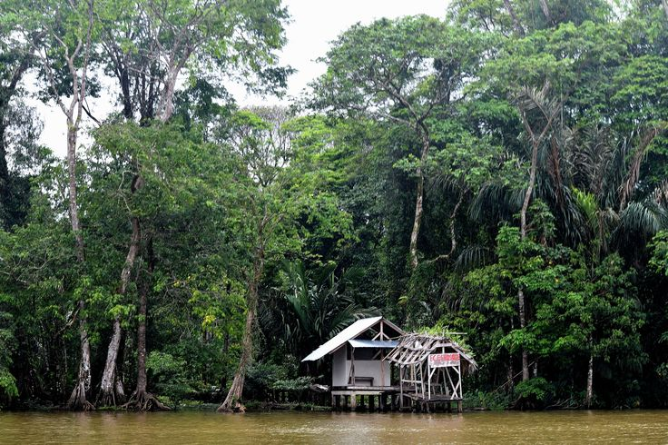 Hause, Lodge. Rainforest, Tortugero, Costa Rica.