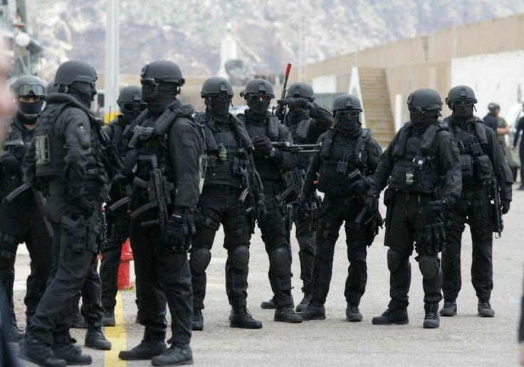Fuerza de Guerra Naval Especial (FGNE)