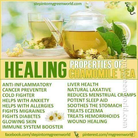 Healing Properties of Chamomile Tea