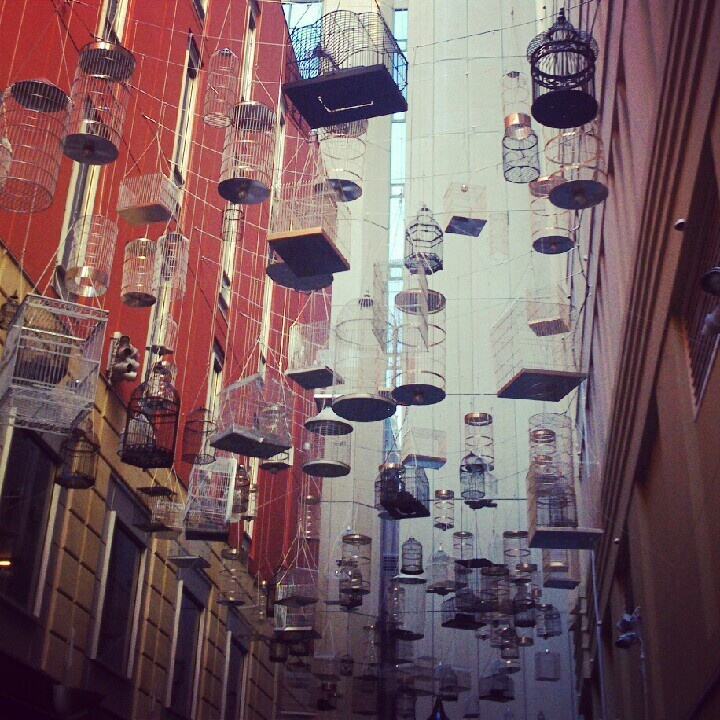 Bird cages, Angel Place, Sydney