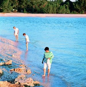 10 Best Florida Beach Vacations: Best Beach for Shelling