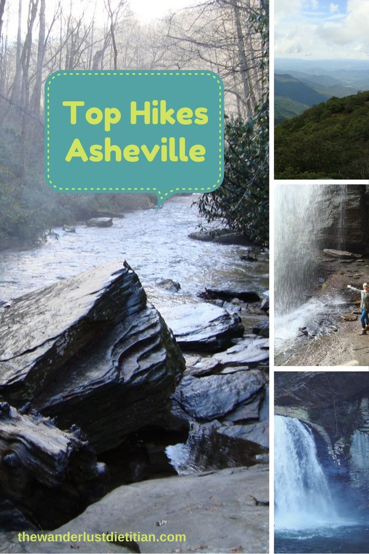 The Blue Ridge mountain range is breathtaking. There are hikes of all levels and distances. Most trails are dog friendly.