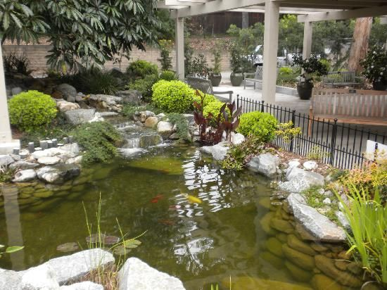 18 best japanese garden images on pinterest japanese for Koi pool santa