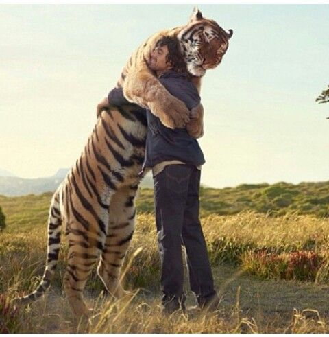 that's an adorable animal, so friendly with the human ({}) so awesome