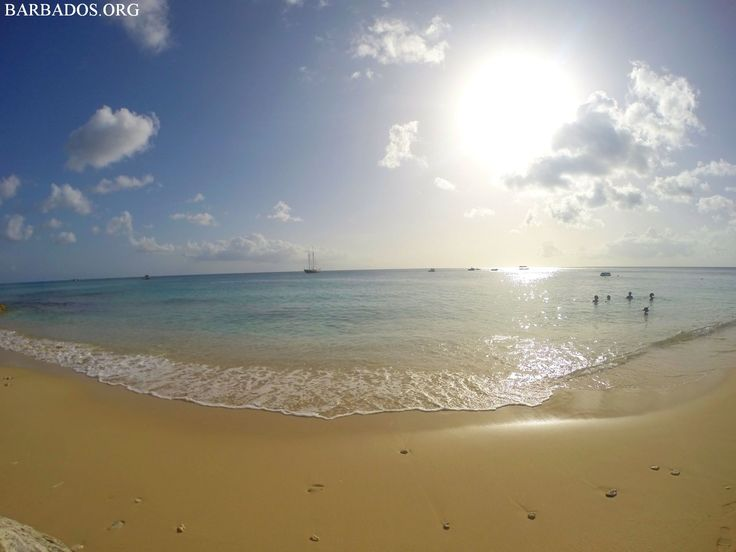How about an evening swim at Paynes Bay on the west coast of Barbados?