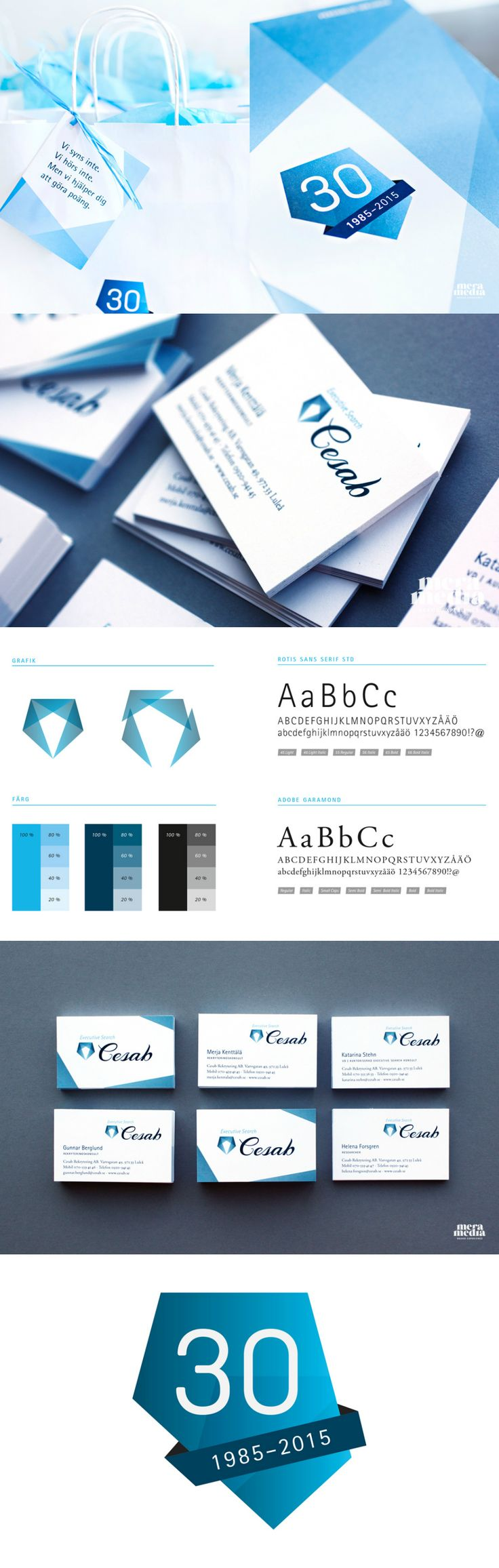 Blue and grey graphic art profile. A website, business cards and profile material have all been redesigned for Cesab.