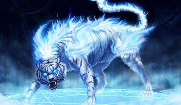 「四神 黄龍」の画像検索結果