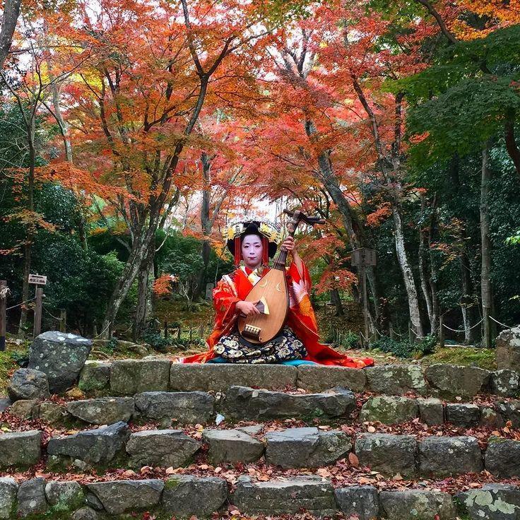 Осенняя мелодия Киото #Киото #мелодия #гейши #Япония #geisha #tayu #kyoto #autumn #melody