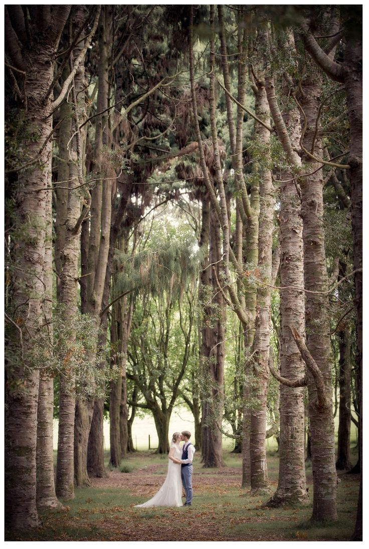 Wedding photography in the Kauri glade at Cornwall Park in Auckland.#aucklandweddings #cornwallparkwedding