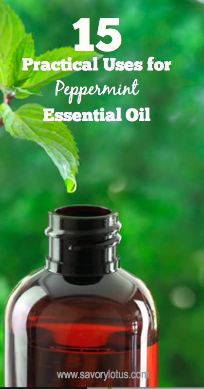 15 Practical Uses for Peppermint Essential Oil - www.savorylotus.com