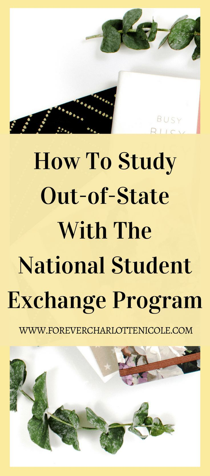 Ever want to study at an out-of-state college for a cheaper price? Learn about the National Student Exchange program, which allows students to do just that. | Forever Charlotte Nicole | www.forevercharlottenicole.com