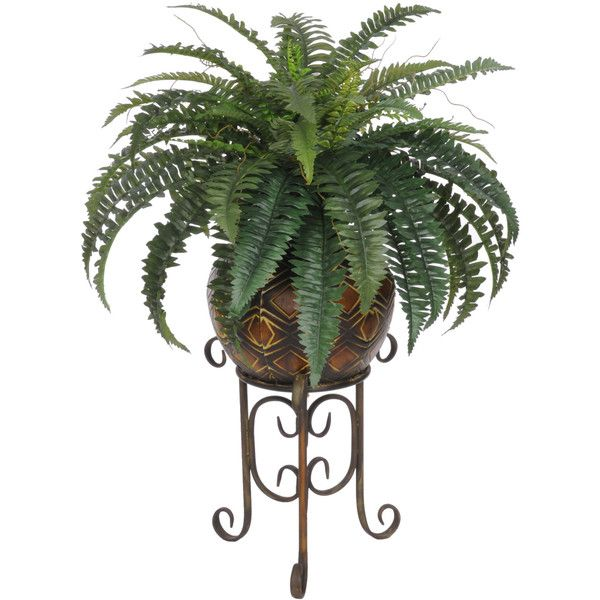 Artificial Fern Floor Plant in Planter Reviews ($97) ❤ liked on Polyvore featuring home, home decor, floral decor, faux planters, fake indoor plants and artificial indoor plants