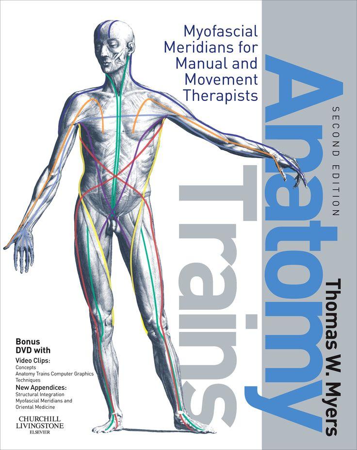 9 best Anatomy Trains images on Pinterest | Human anatomy, Massage ...