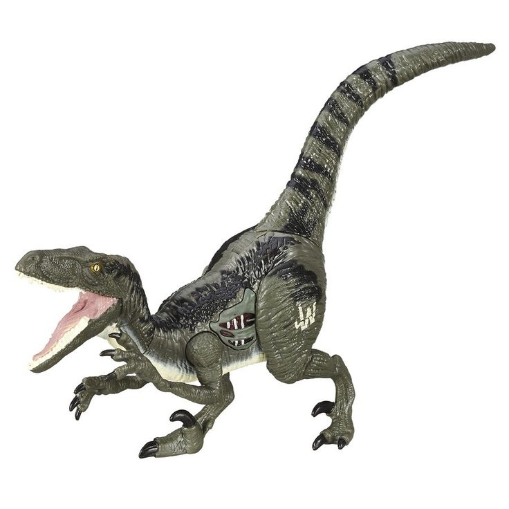 Mejores 48 imágenes de jurassic world en Pinterest | Dinosaurios ...
