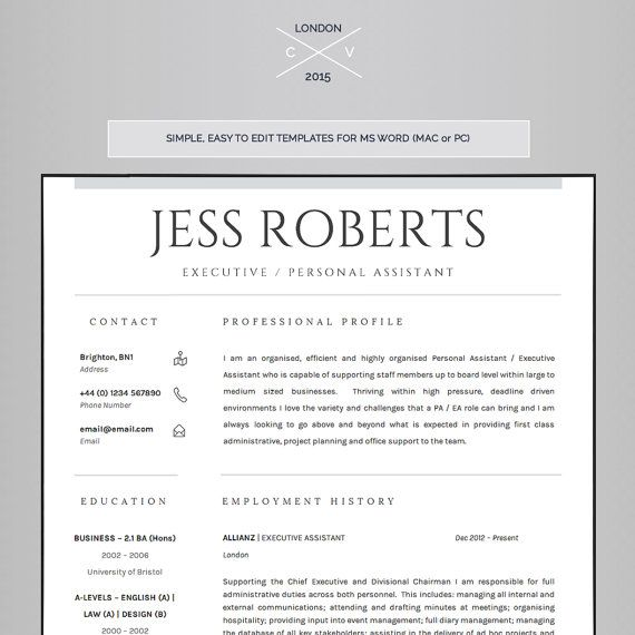 The 25+ Best Professional Cv Ideas On Pinterest | Cv Template