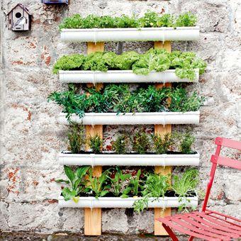 1000 images about muros verdes on pinterest office - Como hacer un muro verde ...