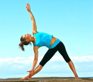 pinhimalayan yoga institute on yoga postures  easy