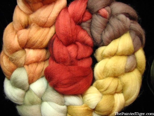 Autumn Splendor - Superwash Merino Wool Combed Top - Hand Dyed Spinning Fiber by The Painted Tiger