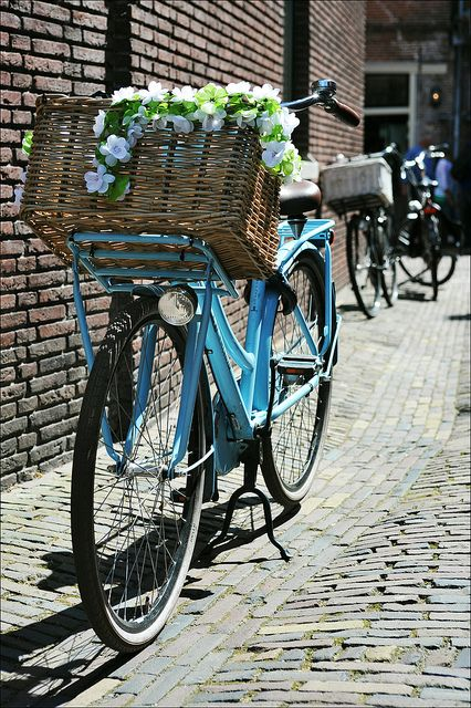 dutch bike - II   Flickr - Photo Sharing!