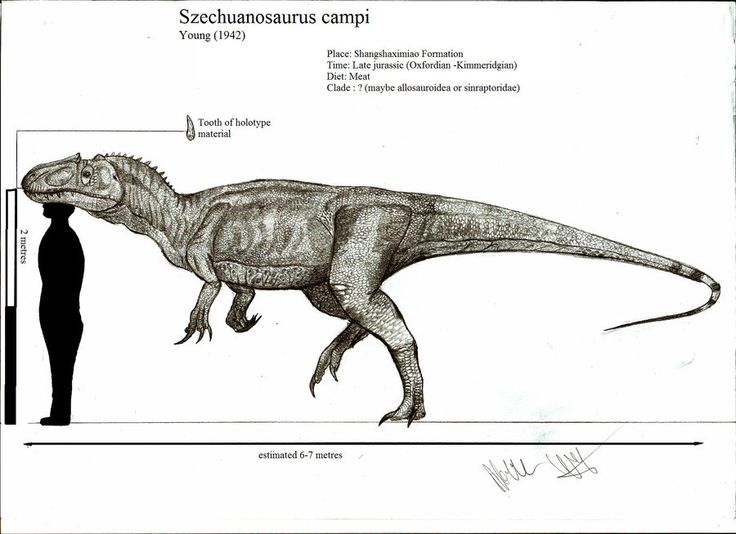 szechuanosaurus campi by teratophoneus pre historic pinterest prehistoric animals geology and prehistoric