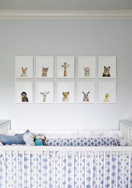 The Animal Print Shop [baby animals] - www.theanimalprintshop.com