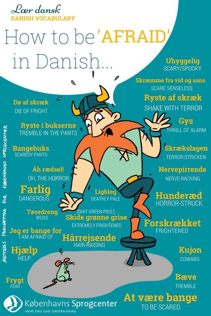 Danish Vocabulary How to be 'afraid' in Danish ✈- Education is important for y…