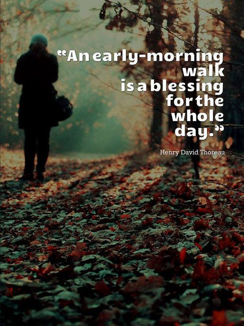25+ Best Morning Walk Quotes Ideas On Pinterest